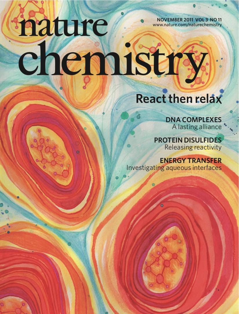 nature chemistry cover NOV11